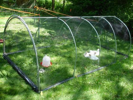 A chicken coop for heather 39 s chickens in lawrence ks - Como hacer un gallinero ...